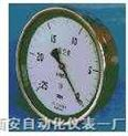 不锈钢膜合压力表 YE160B、YE160BZ型全不锈钢膜合压力表