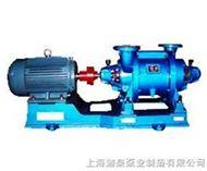SZ系列水環式真空泵及壓縮機