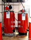 300kg/h蒸汽锅炉