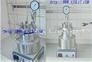 北京高壓微型反應釜