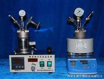 加氢反应釜 CGF-200ml