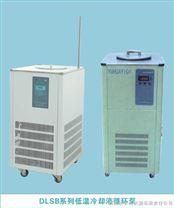 DLSB系列低溫冷卻液循環泵-鞏義予華儀器專業生產