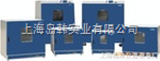 鼓風干燥箱(底部加熱,300℃) 恒溫烘箱 工業烤箱