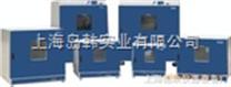 鼓风干燥箱(底部加热,300℃) 恒温烘箱 工业烤箱