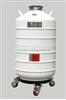 液氮罐YDS-50B-125