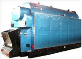 DZL系列鏈條蒸汽鍋爐