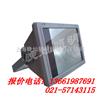 【GT002】GT002防水防尘防震投光灯,NFC9180,BTC8210,RJW7101上海出售