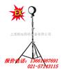 【DGY100A】DGY100A便携式/多功能工作灯价格 FW6102  NFC9180  BTC8210 上海出售
